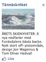 Reklame for skiresort
